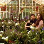Hamari Adhuri Kahani : First Wednesday (Day 6) Box Office Collections