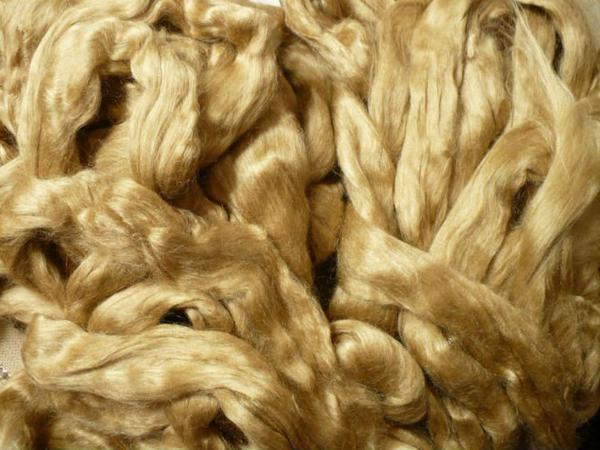 Muga Silk from Assam